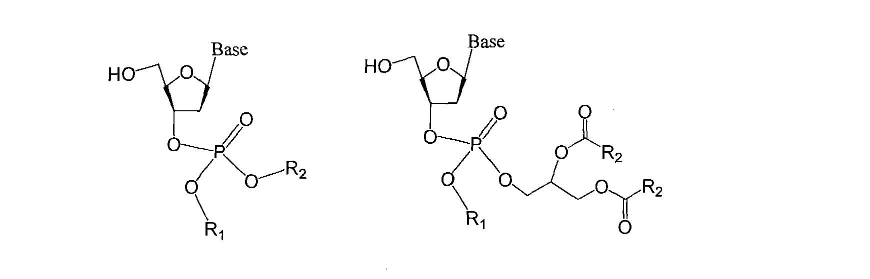 [0051] 实施例I化合物B的合成 [0052] 反应路线如图I所示。 [0053] 取化合物BI (亚磷酰化核苷单体均购自国药集团,为DNA合成常用化合物,市场来源广泛)(740mg), IH-四唑(70mg),无水无氧条件下混合,溶于双蒸无水CH3CN 15ml中,搅拌。取化合物正十六醇(棕榈醇)(360mg),溶于IOml双蒸无水CH3CN中,缓缓注入前述搅拌反应中。室温继续搅拌反应2小时,TLC鉴定反应基本完全后冰浴降温。 [0054] 冰浴搅拌下逐滴滴加过氧叔丁醇(O.