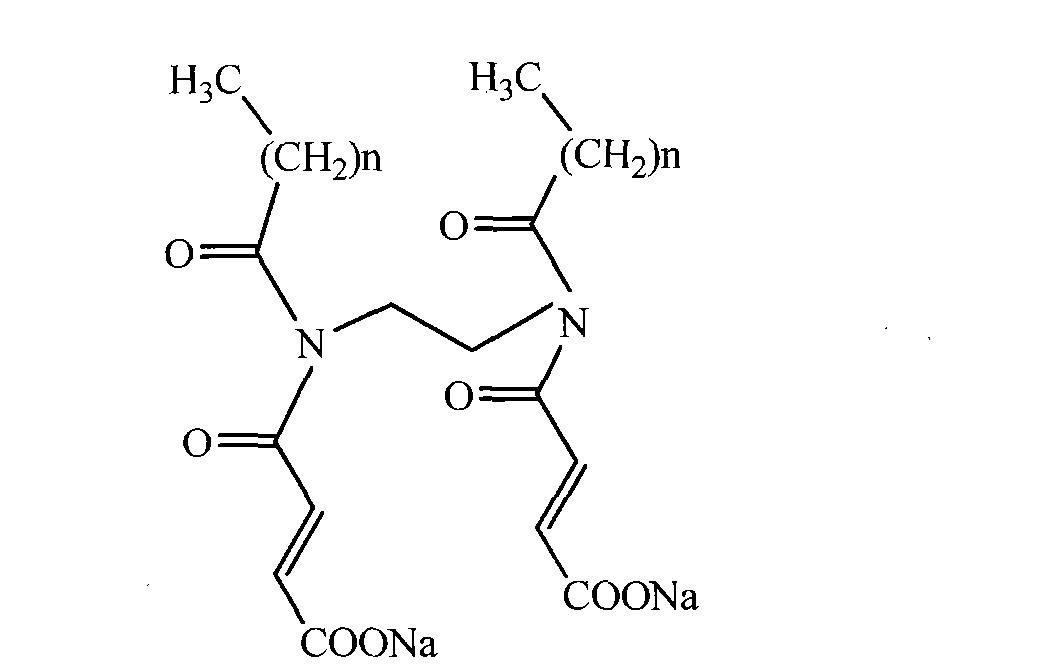 双子叶根初生结构图