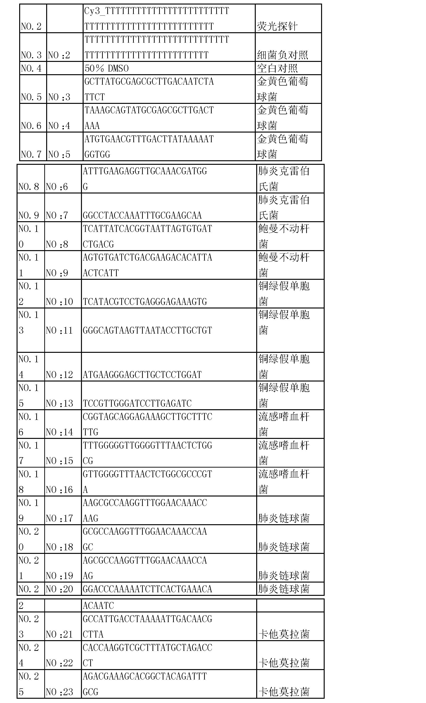 0051]实施例2引物的设计和制备