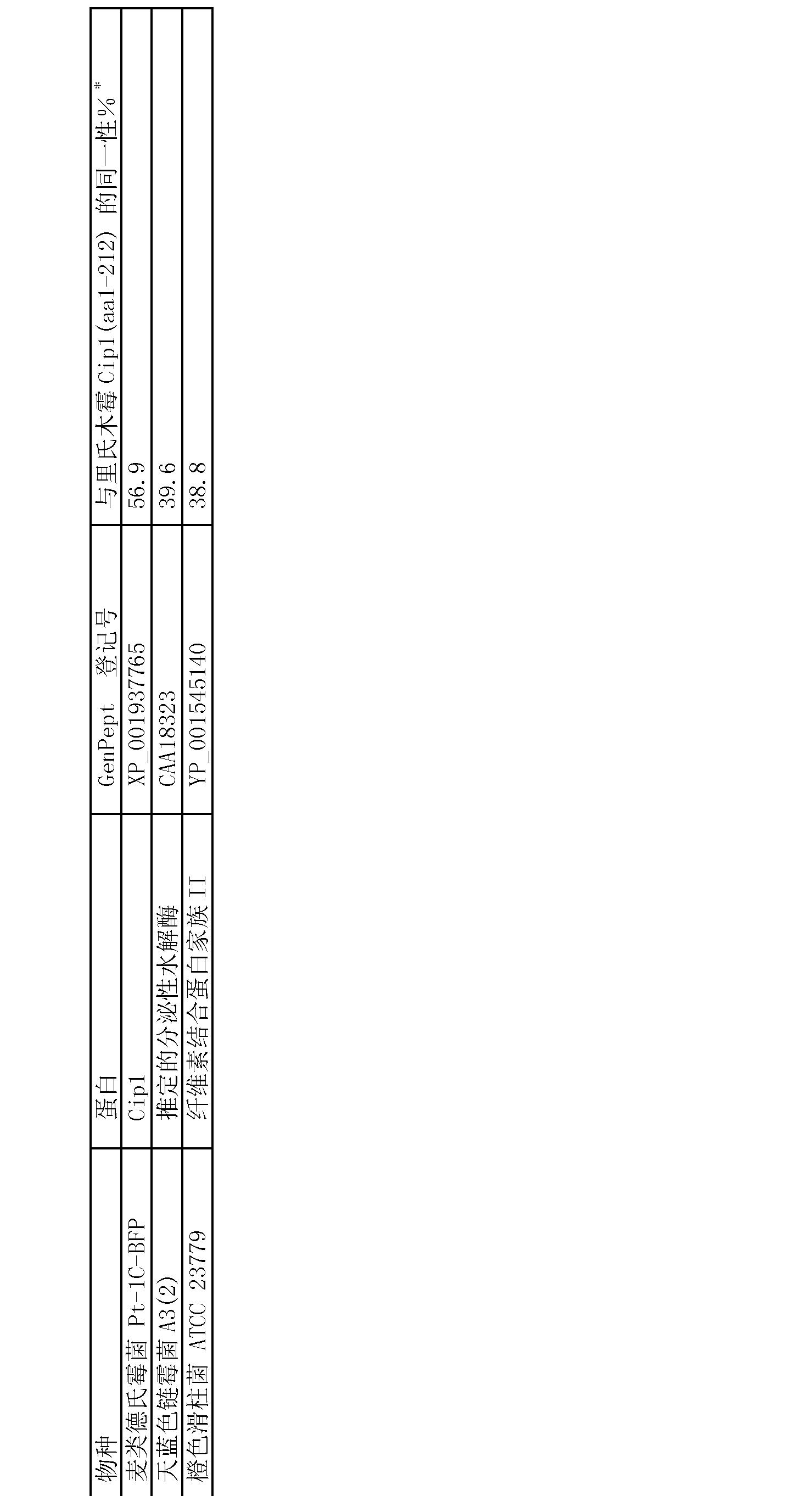 木霉显微结构图