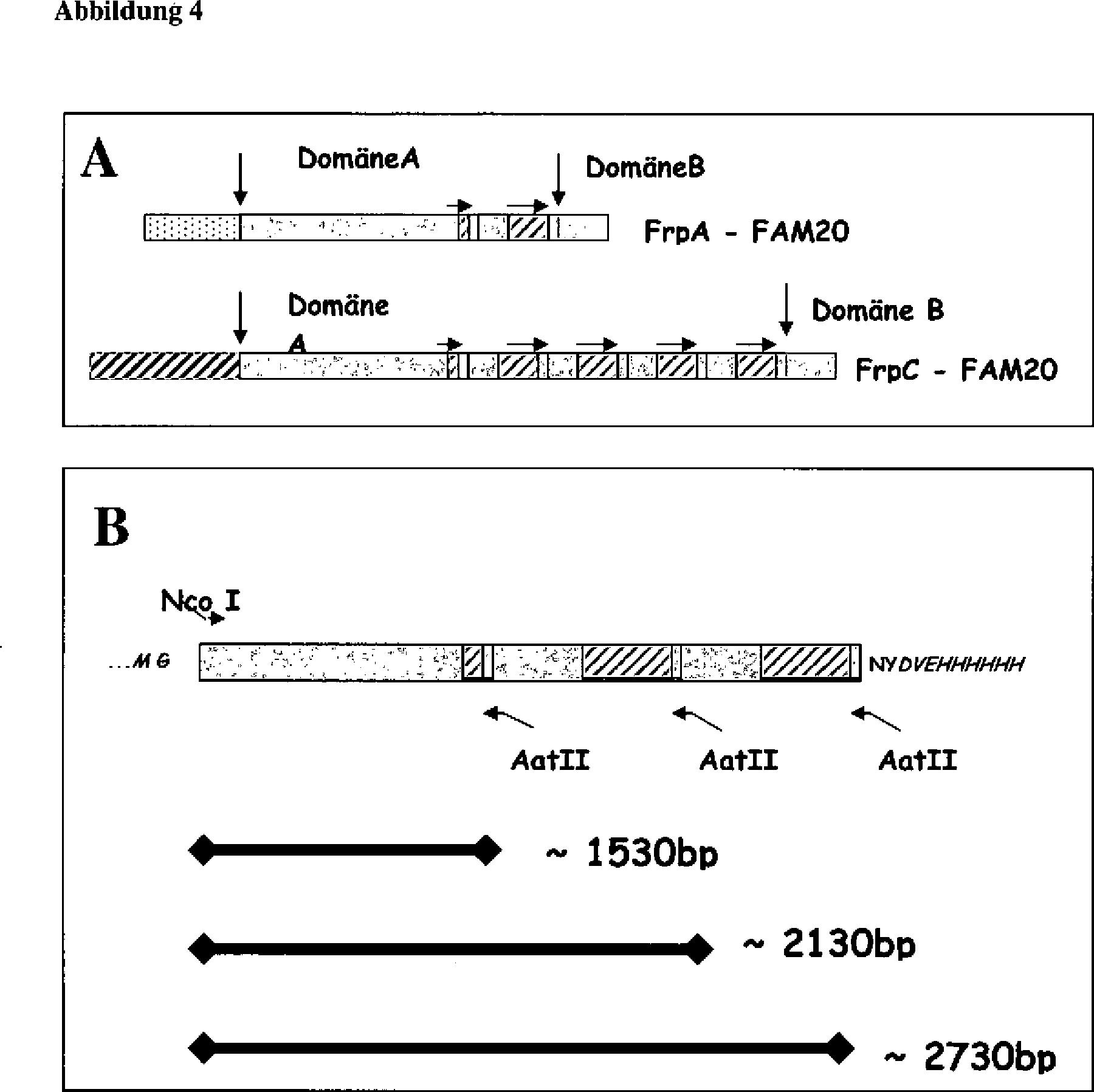 Patent DE20321890U1 - Impfstoffzusammensetzung - Google Patents