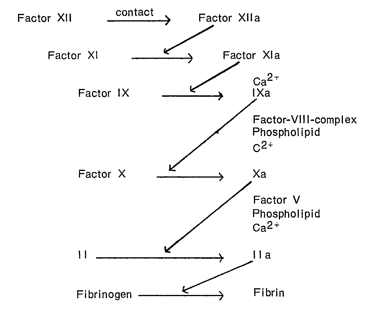 the process of coagulation and the necessary enzymes and factors that influence it Blood flow controls coagulation onset via the positive feedback of factor vii activation by factor xa the clotting process is initiated by tissue factor moreover, we were able to identify two most important factors that are removed.