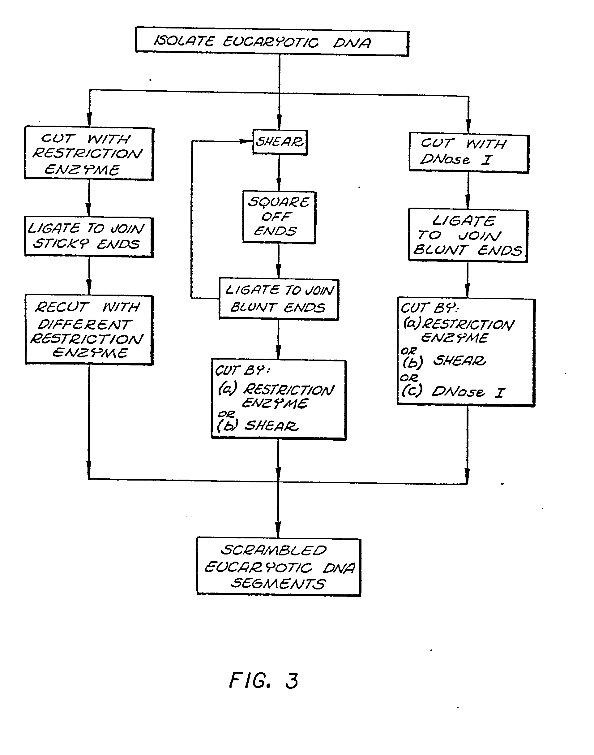 Flowchart of dna replication create a flowchart dna replication flowchart create a flowchart patent drawing nvjuhfo images pooptronica