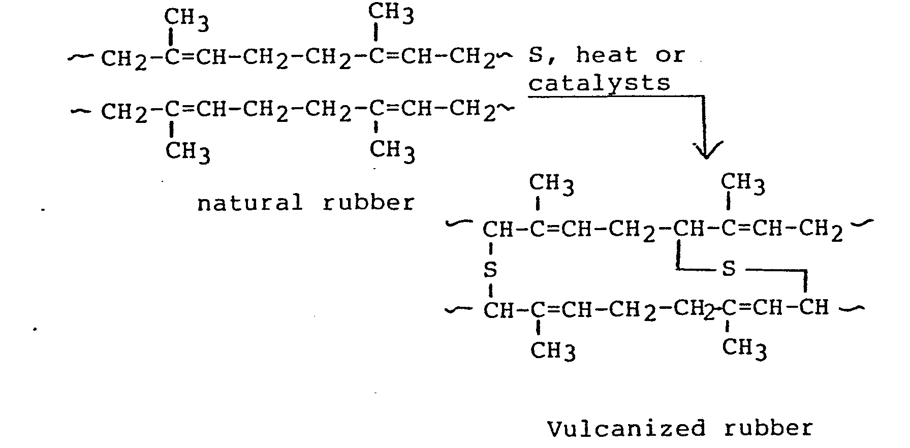 degradation of natural rubber Biodegradation of natural rubber and related compounds: recent insights into a hardly understood catabolic capability of microorganisms.