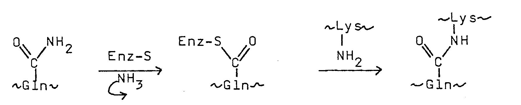 专利ep0237082a2 - 3,5-disubstituted