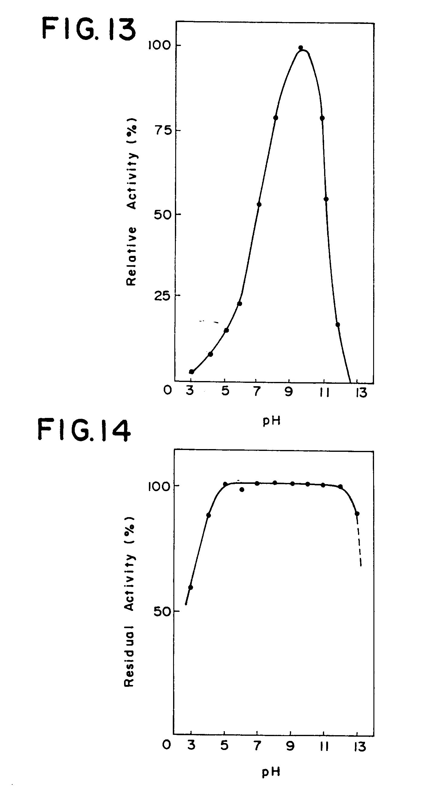 patent ep0265832b1 alkalische cellulasen und mikroorganismen zu deren herstellung google. Black Bedroom Furniture Sets. Home Design Ideas