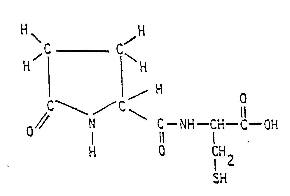 Amino acid  Wikipedia