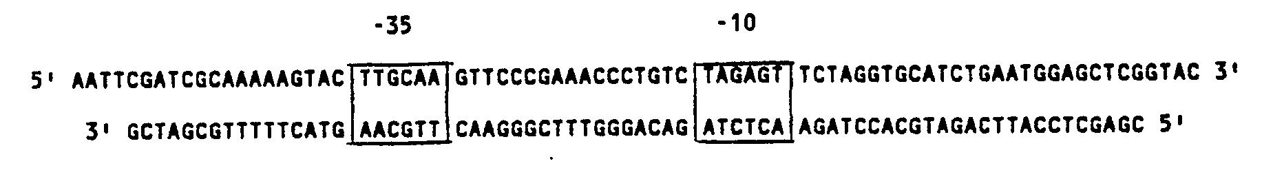 thesis on lipase enzyme
