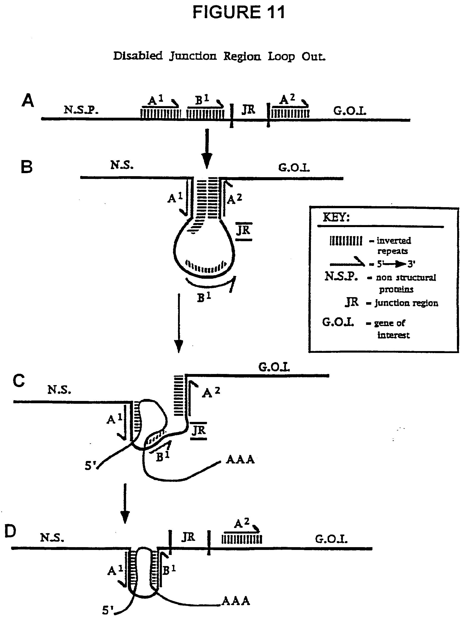 电路 电路图 电子 原理图 1856_2472 竖版 竖屏