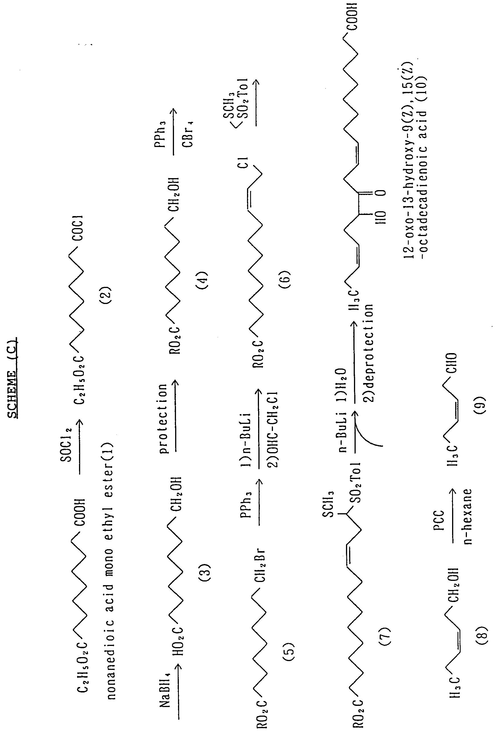 Lfg2000 analytical essay