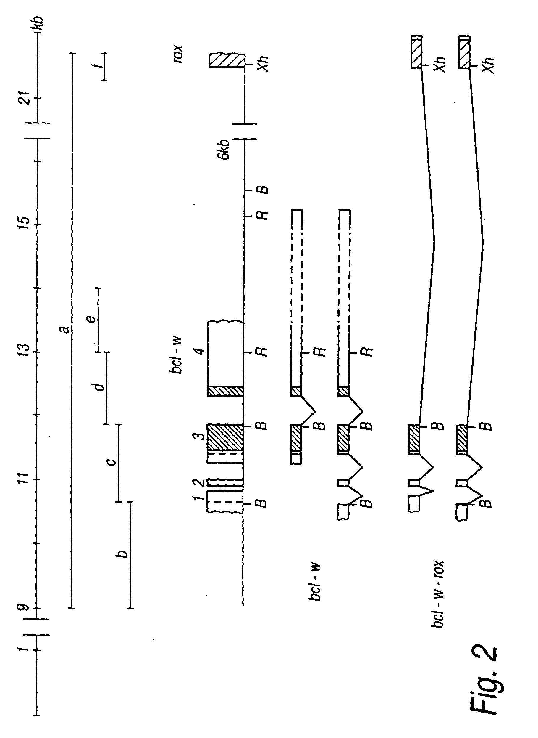电路 电路图 电子 工程图 平面图 原理图 1819_2492 竖版 竖屏
