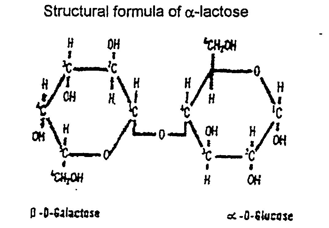 lactose structure - photo #24