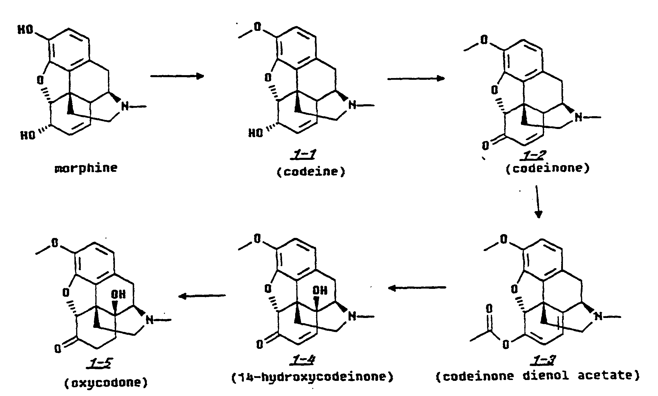 synthesising oxycodone This step-wise approach to pain relief recommends non-opioid analgesics such as acetaminophen and nsaids for mild-to-moderate pain weak opioids, such as codeine, dihydrocodeine or tramadol, for moderate-to-severe pain and stronger opioids, such as oxycodone and morphine, for severe pain.