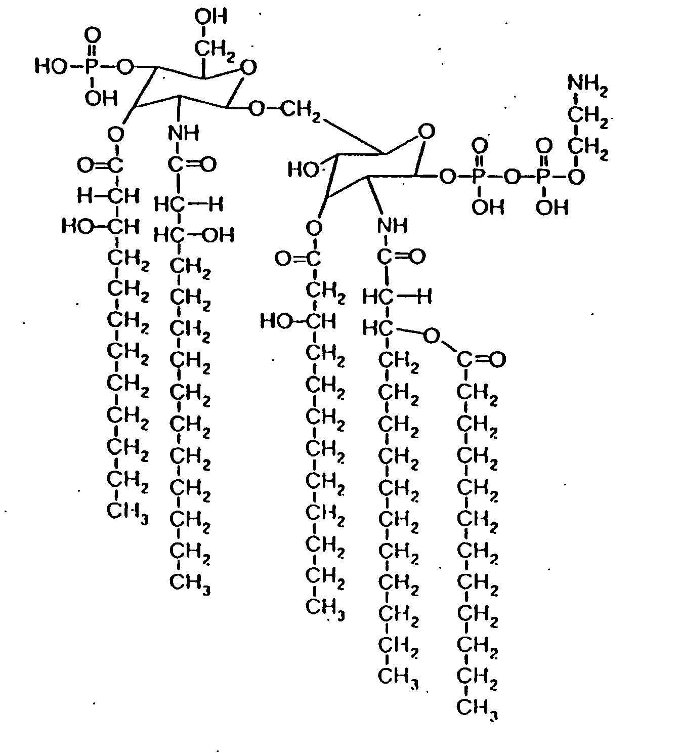 Lipid Molecule Structure