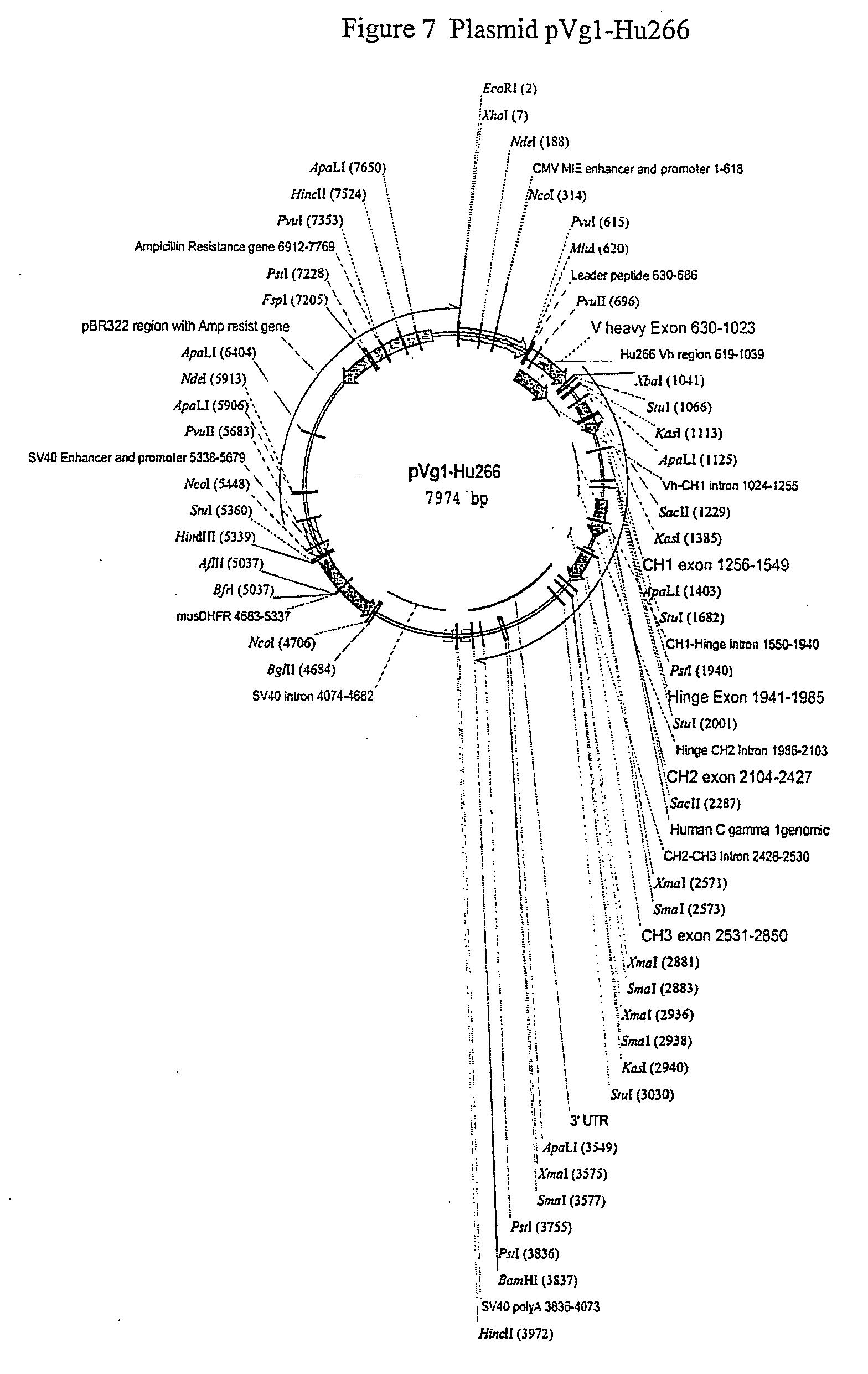 Steven R. Holtzman Digital Mantras