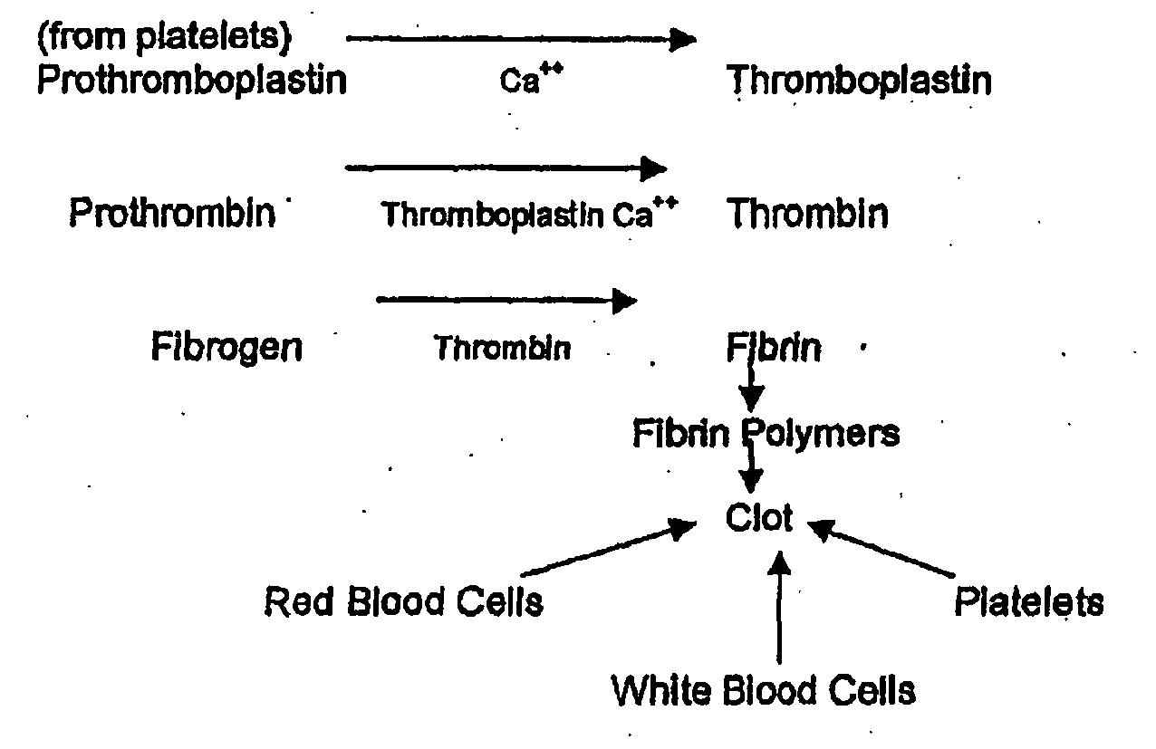 mechanism of blood clotting flowchart