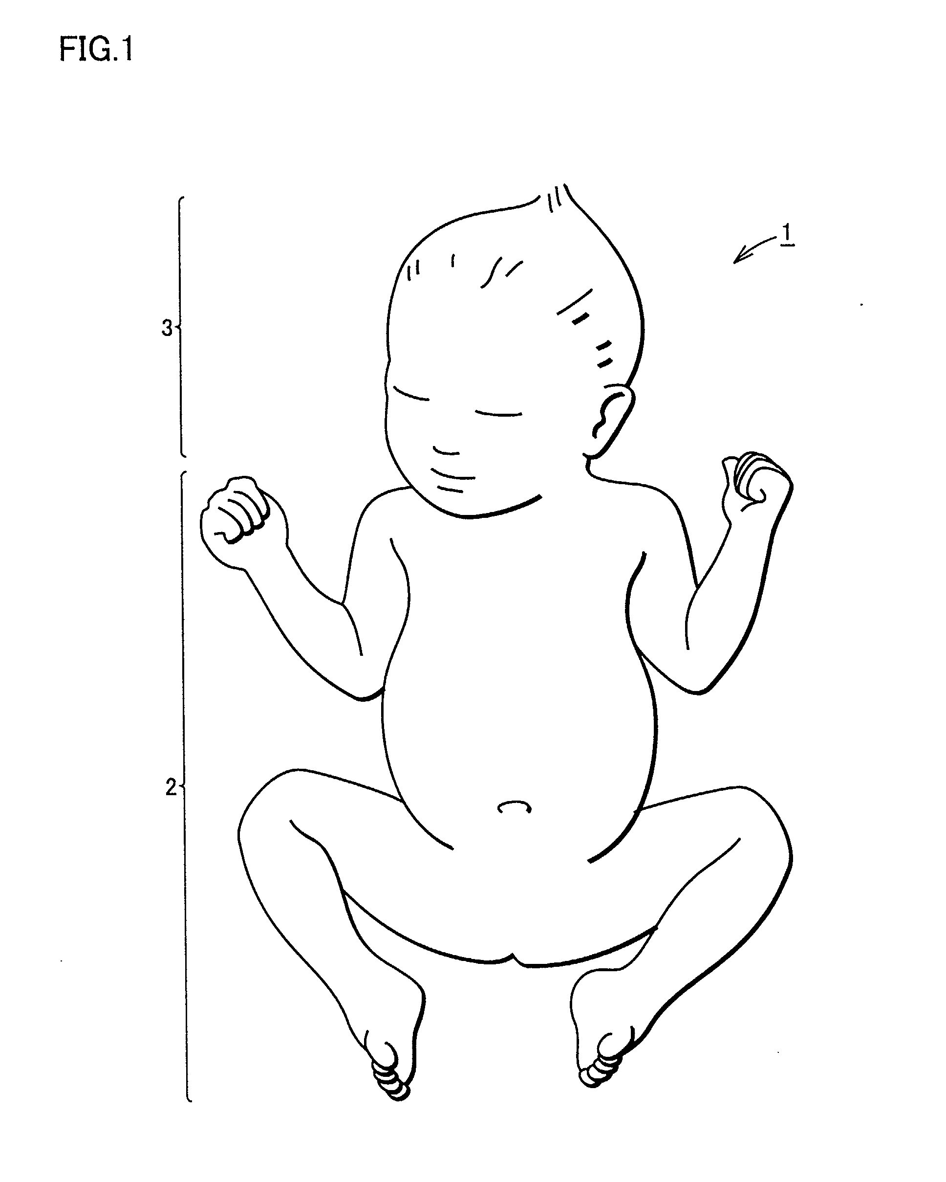 patent ep1388833a1 - neonate crash test dummy