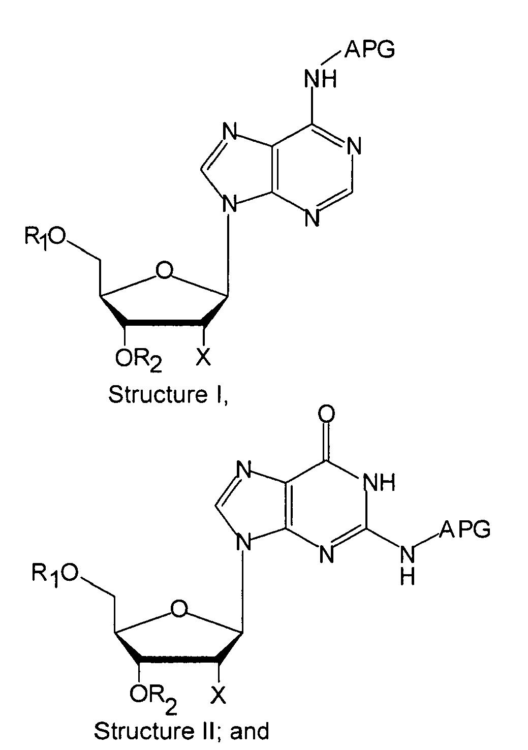 Nucleotide Stru...