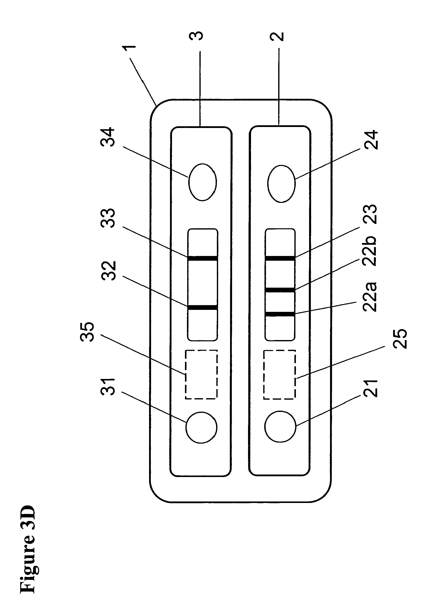 Patent ep1798556a1 device for the early and rapid immunochromatographic detection of hiv and - Test hiv p24 periodo finestra ...