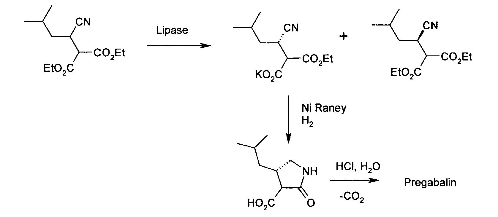 process synthesis pregabalin
