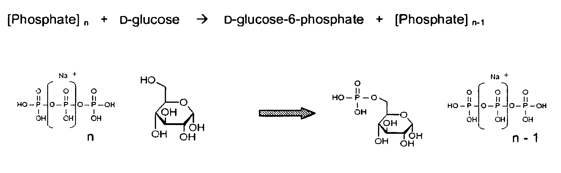Figure imgb0001 D 2 Deoxyglucose Fischer Projection