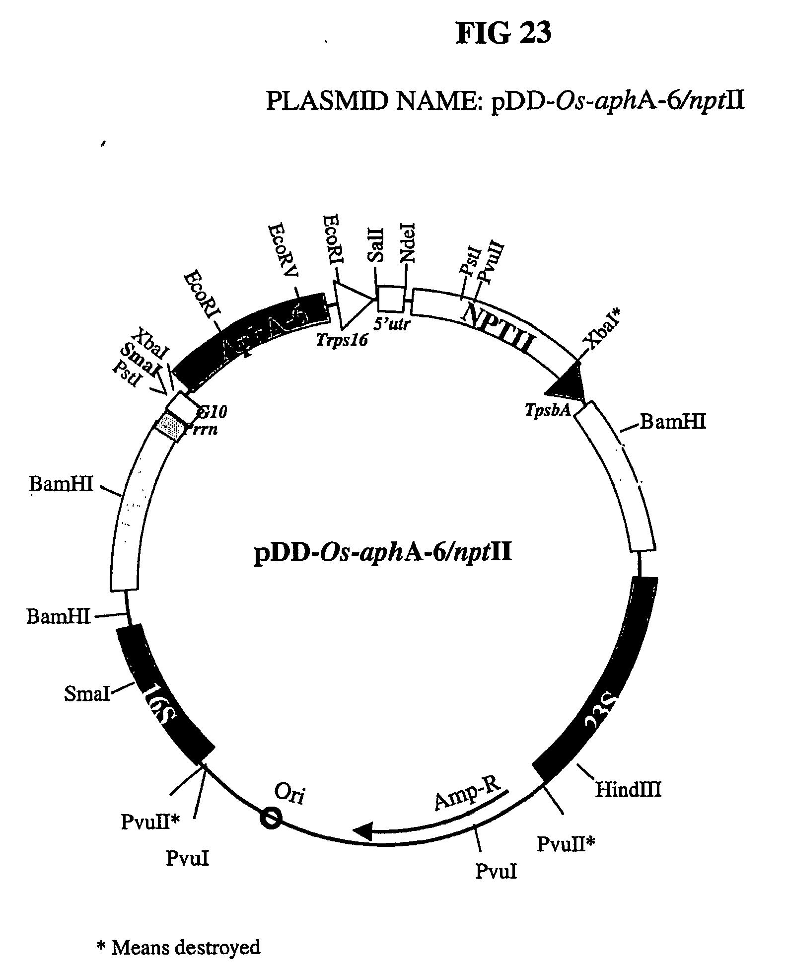patent ep2308985a2