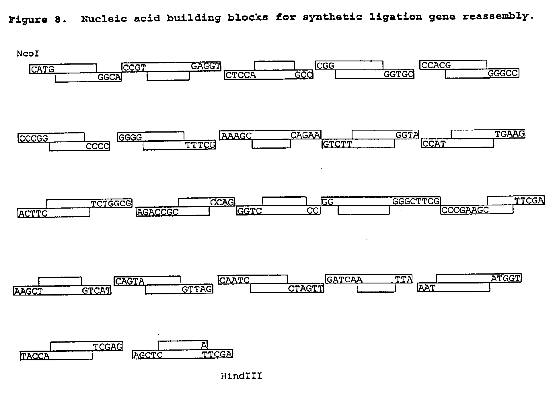 Patent ep2397549a2 non stochastic generation of genetic vaccines patent drawing hexwebz Choice Image