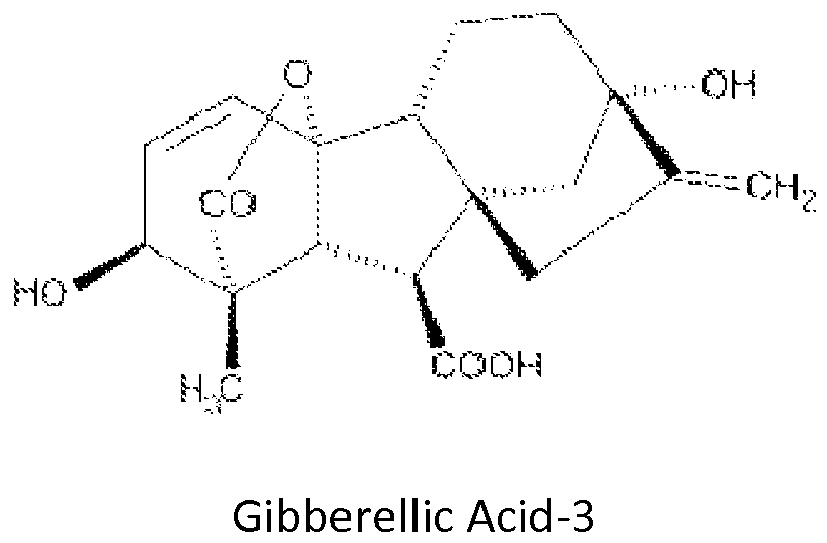 acid change gibberellic sex confidential