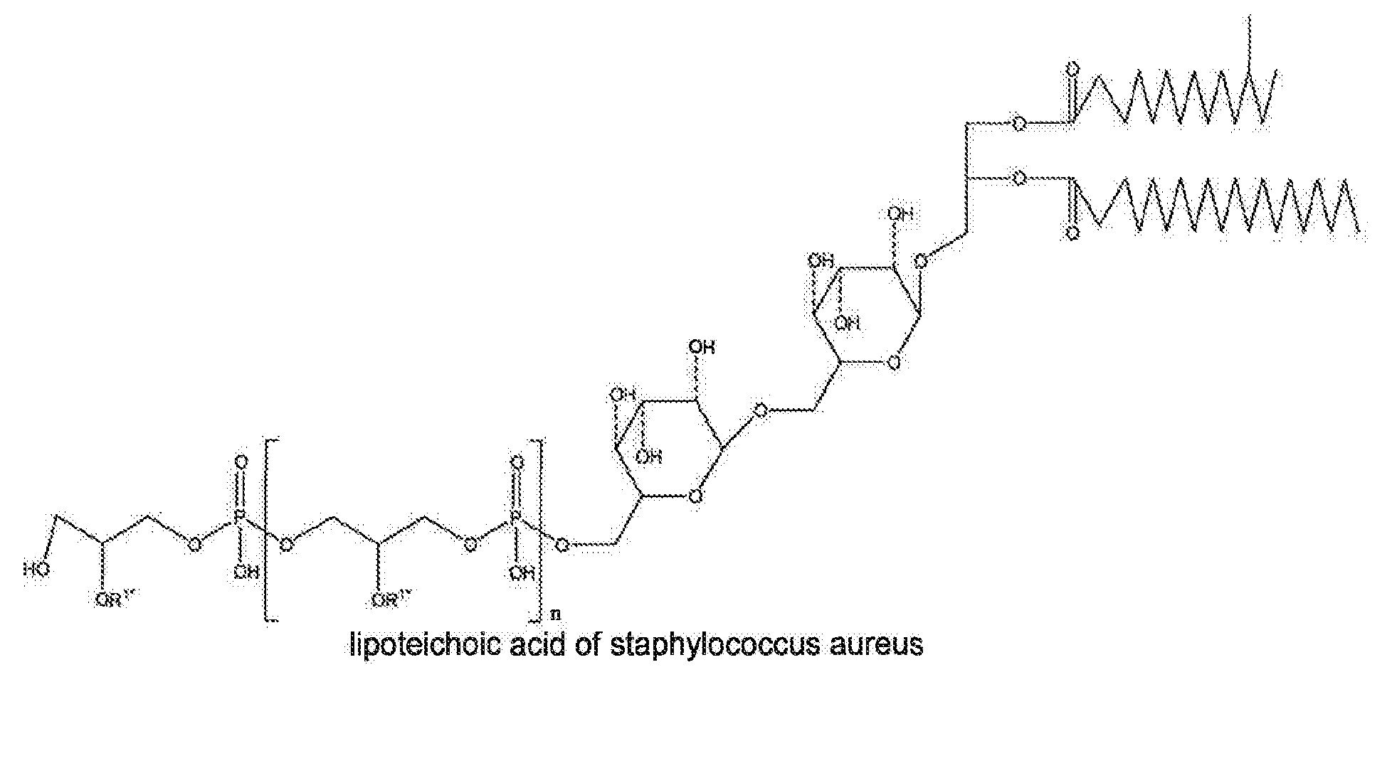 Patent EP2545909A1 - Combination of D-Amino Acids and ...  Lipoteichoic Acid