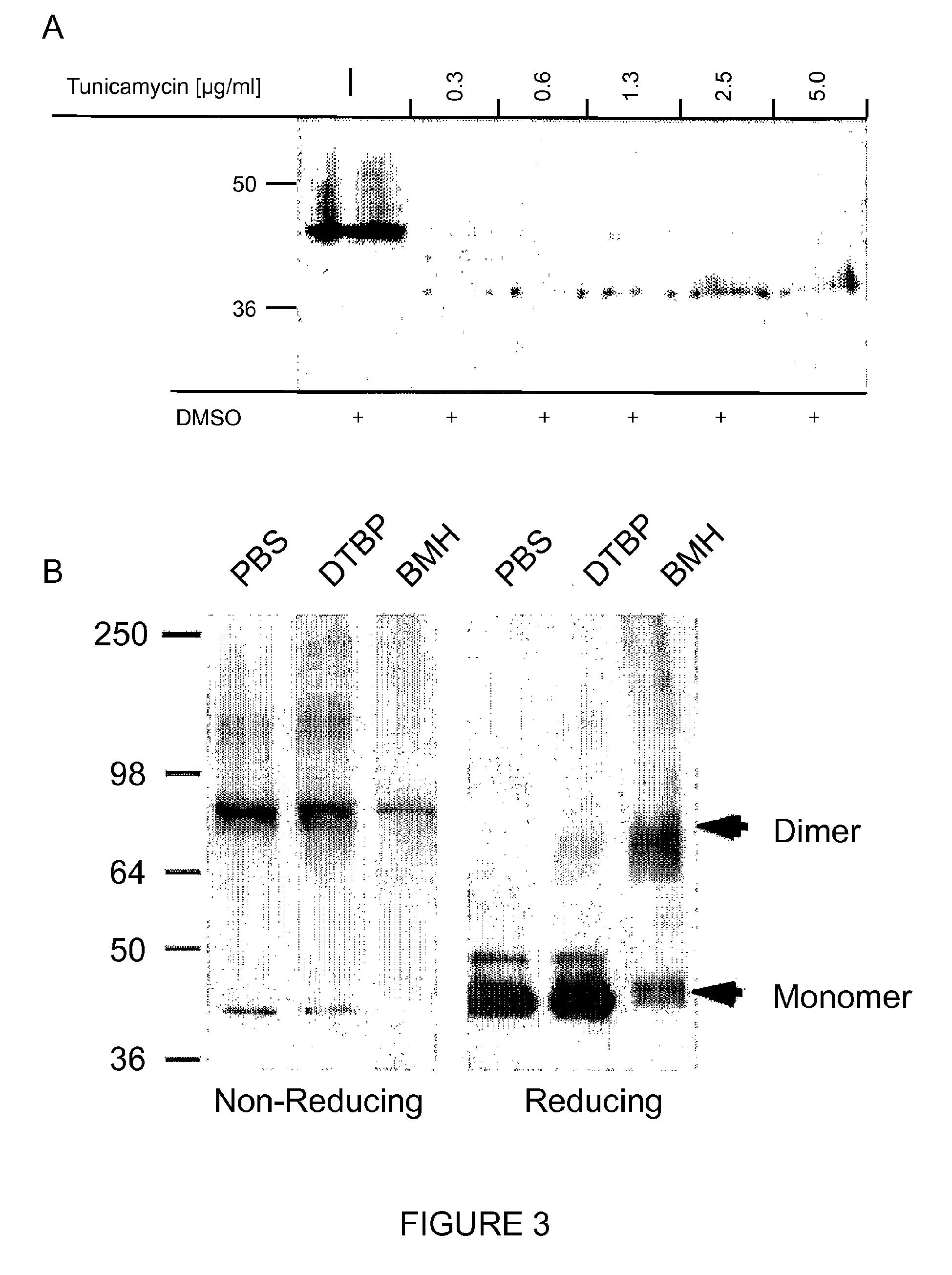 专利ep2605013a1 - stimulation of pancreatic beta