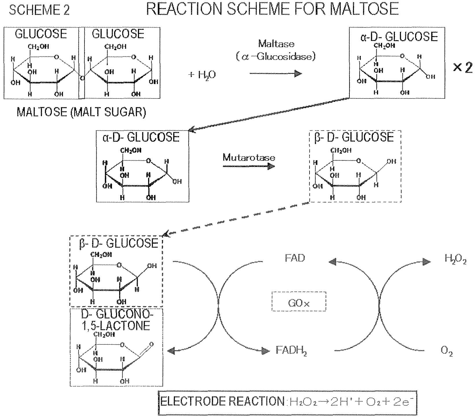 Patent EP2765412A1 - Biosensor and measuring method employing same ...