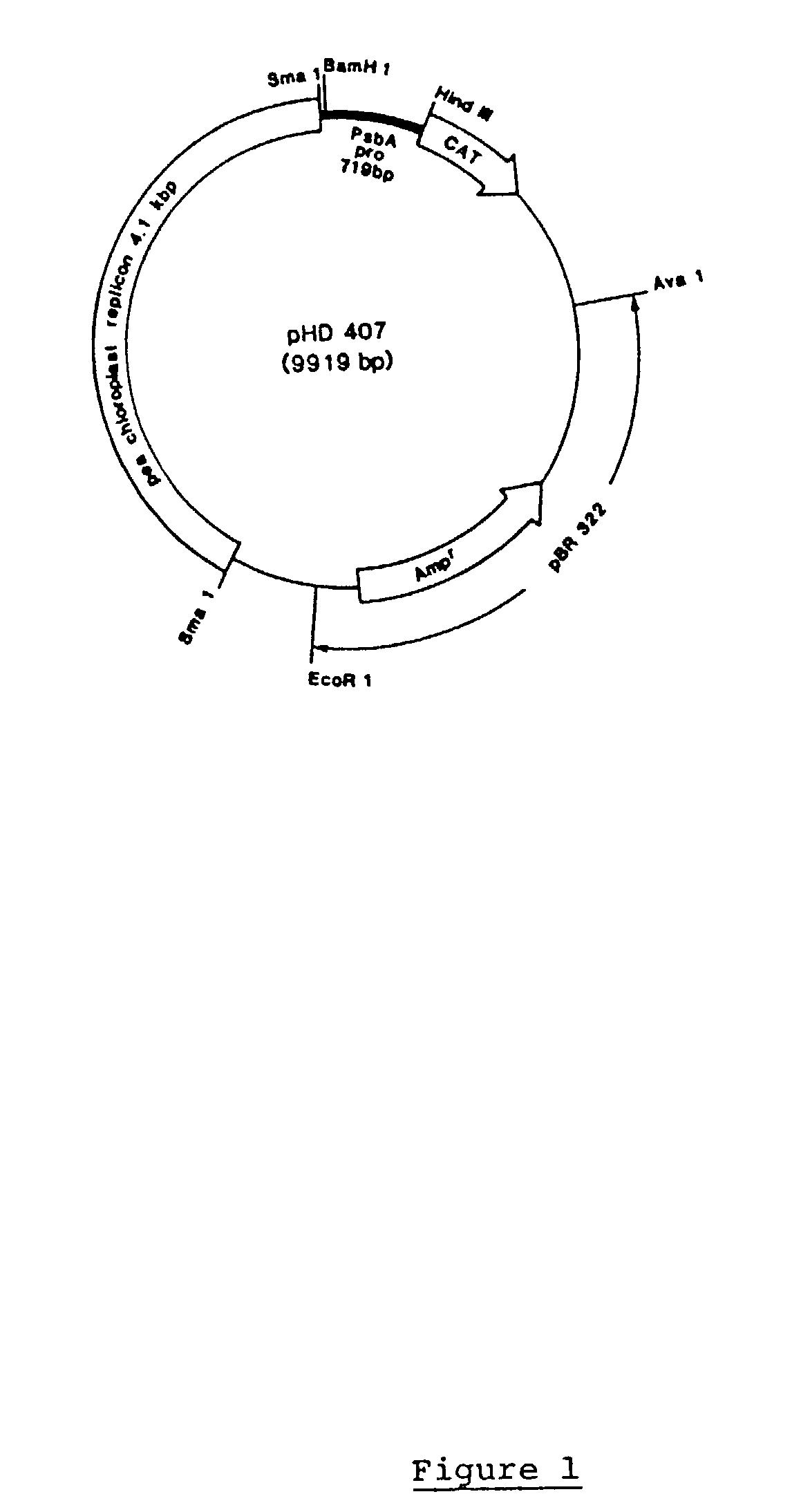 patent us20030009783