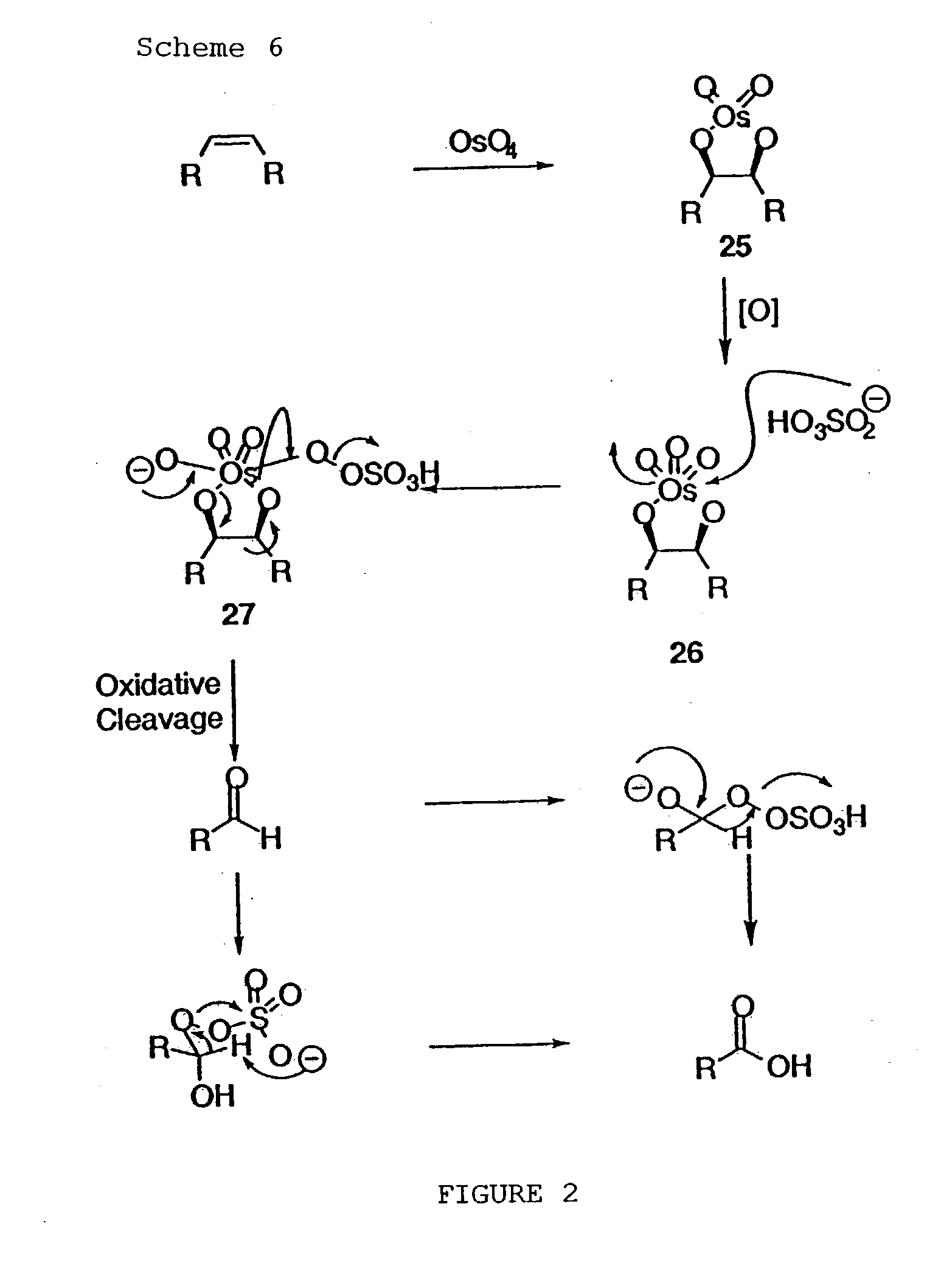 schrock alkyne metathesis catalyst Alkyne metathesis has been a useful tool for c–c bond formation since the discovery of structurally well-defined metal alkylidynes by schrock catalyst for.