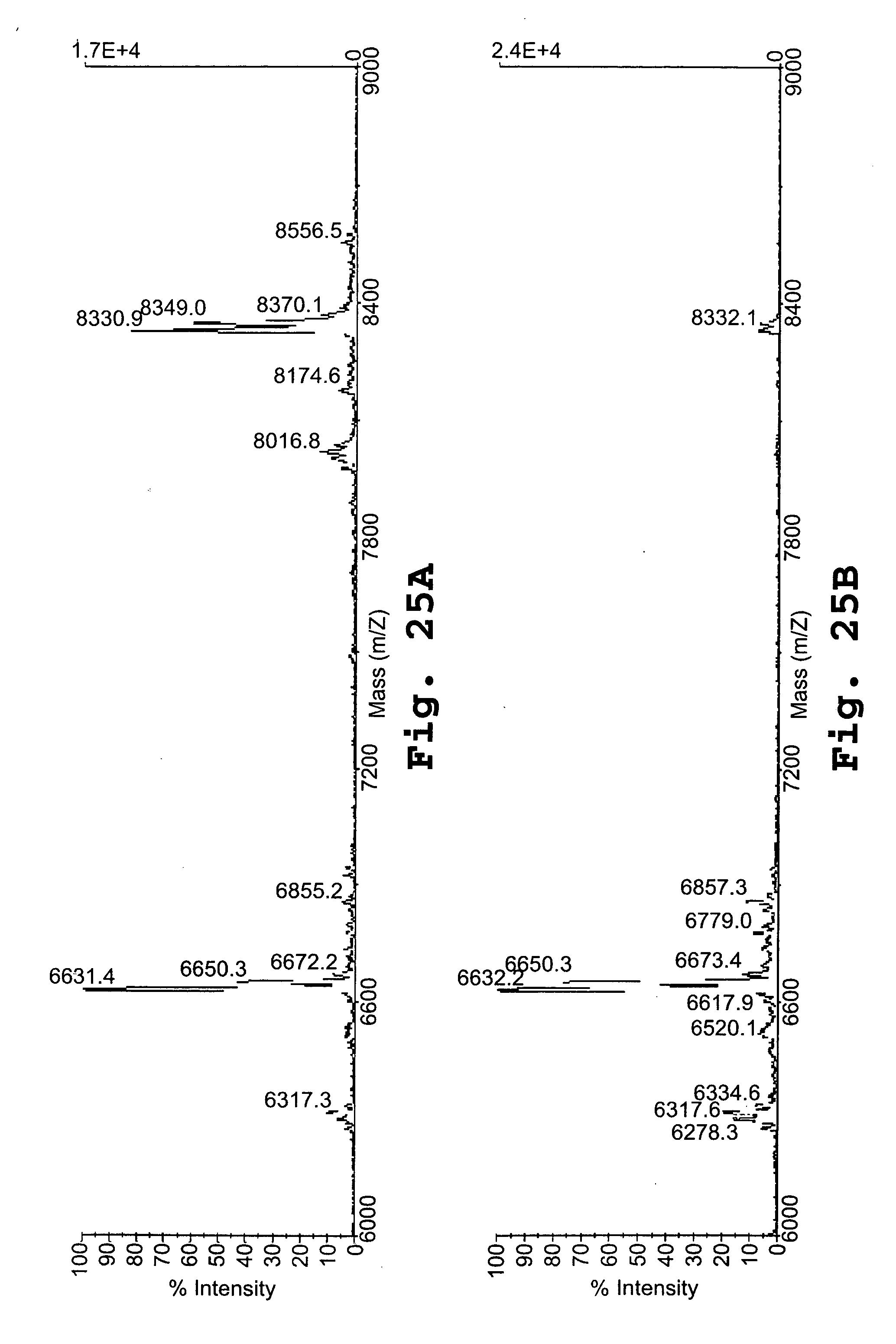 电路 电路图 电子 原理图 2068_3100 竖版 竖屏