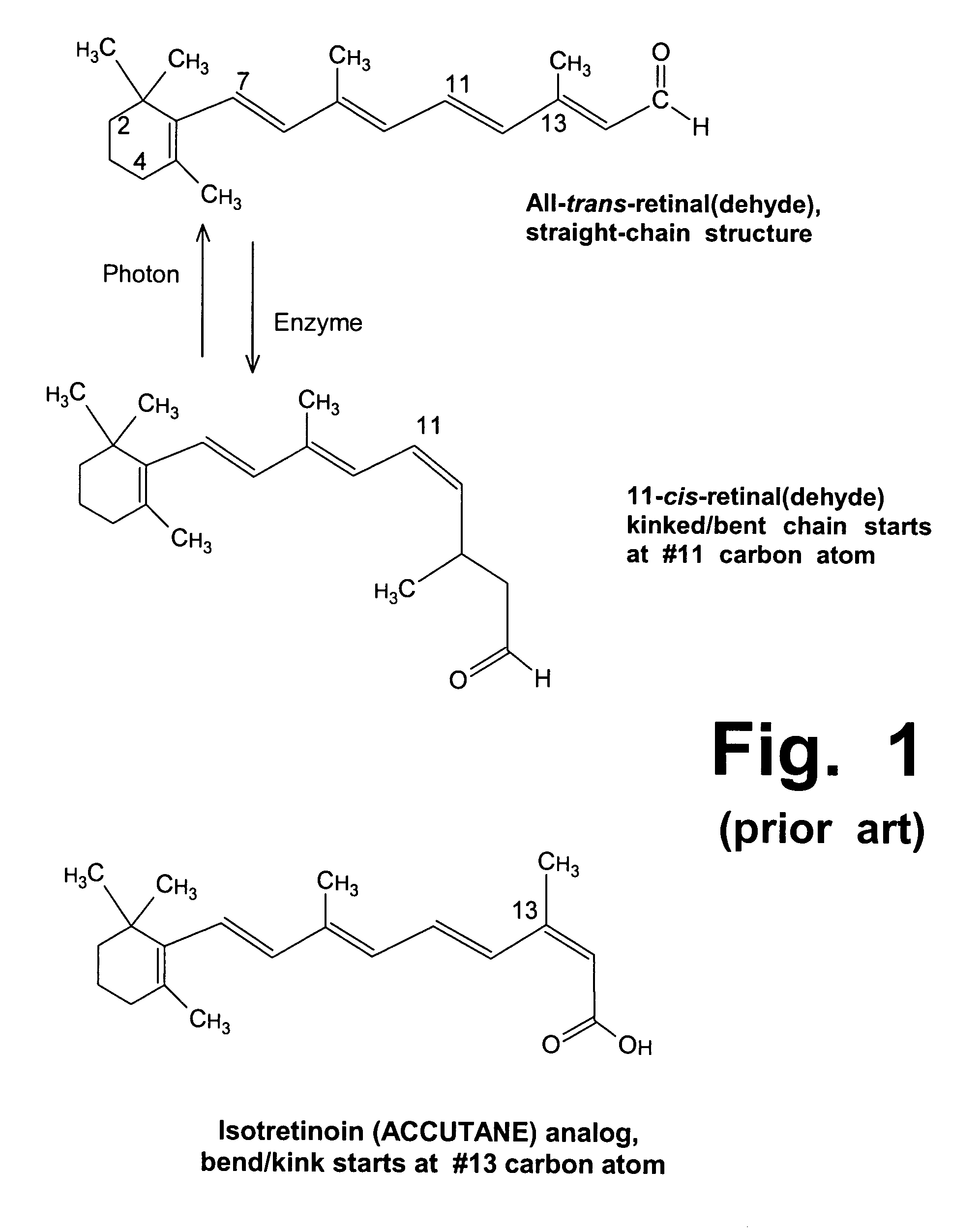 Patent US20060089411 - Treatment of Stargardt's disease and other ...