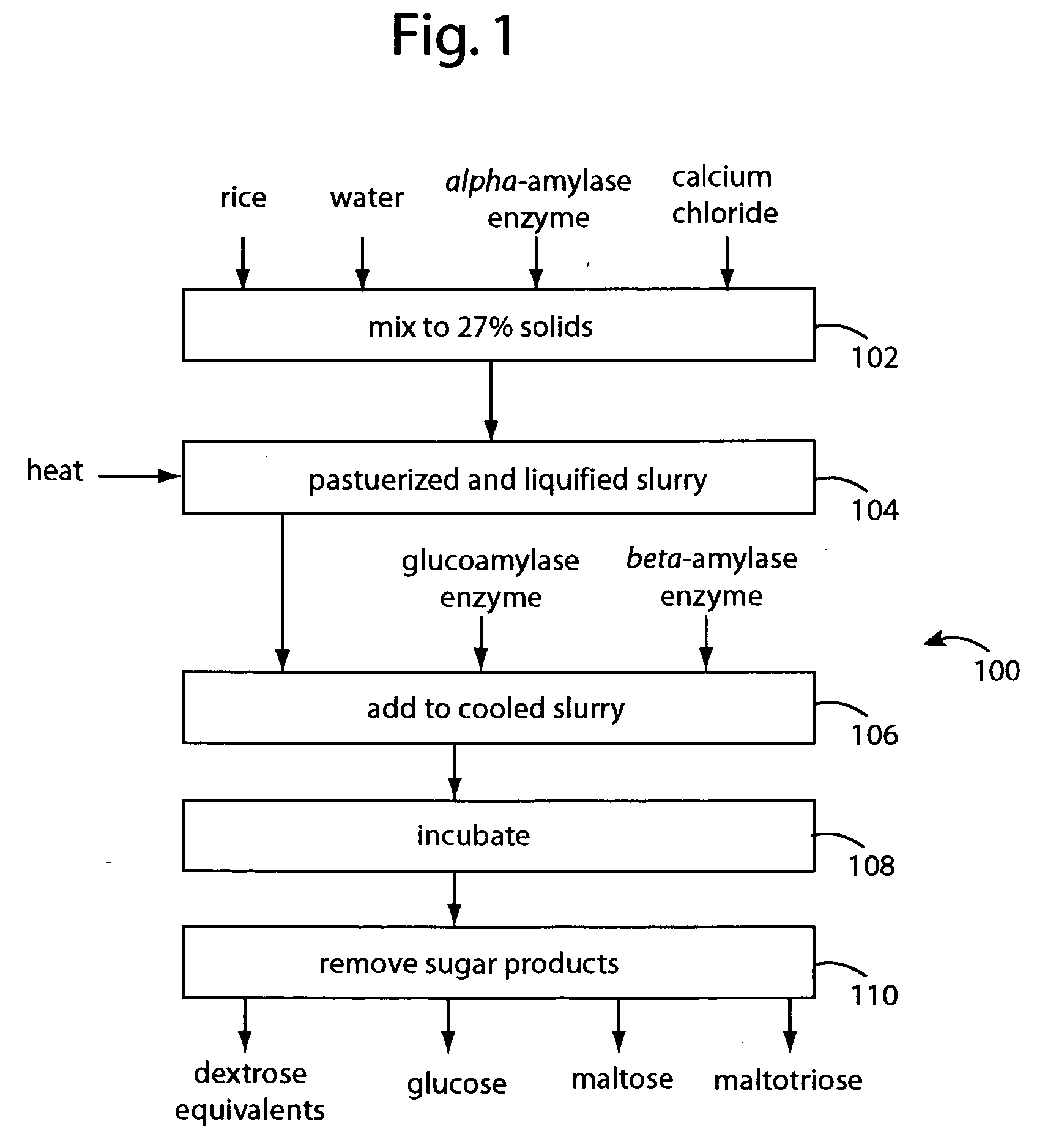 an analysis of the enzyme amylase which catalyze the hydrolysis of starch to maltose Maltose, sucrose and d-glucose are found in most produced on hydrolysis of starch by α-amylase and β in the analysis of d-glucose and maltose.