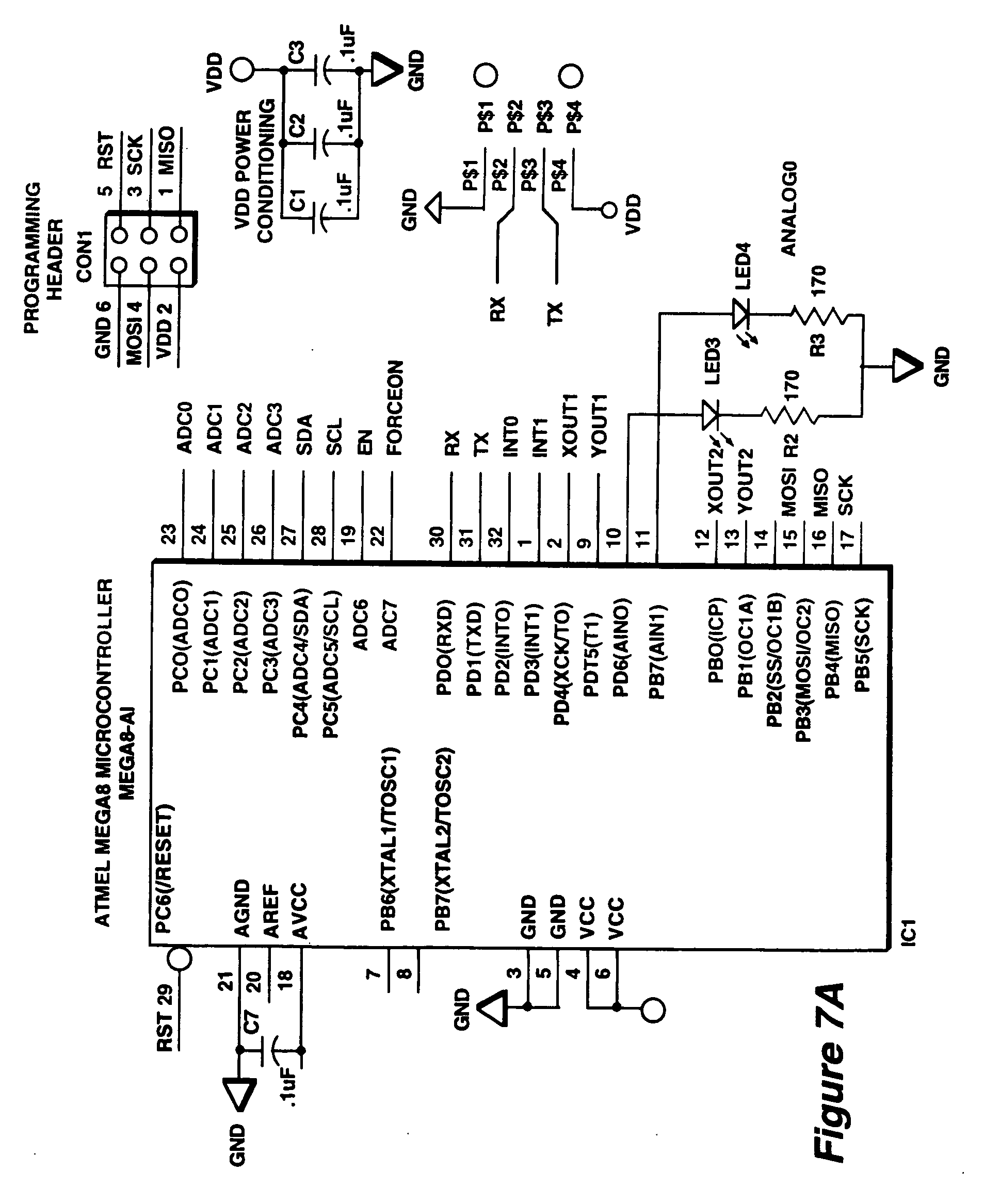 w6 a1 human pathophysiology Thus, an individual hla allele can promiscuously associate with distinct diseases that do not share pathogenesis, target tissues or putative antigens second, allele‐associated diseases can demonstrate species non‐specificity such as hla‐drb10401, which associates with human ra, confers.
