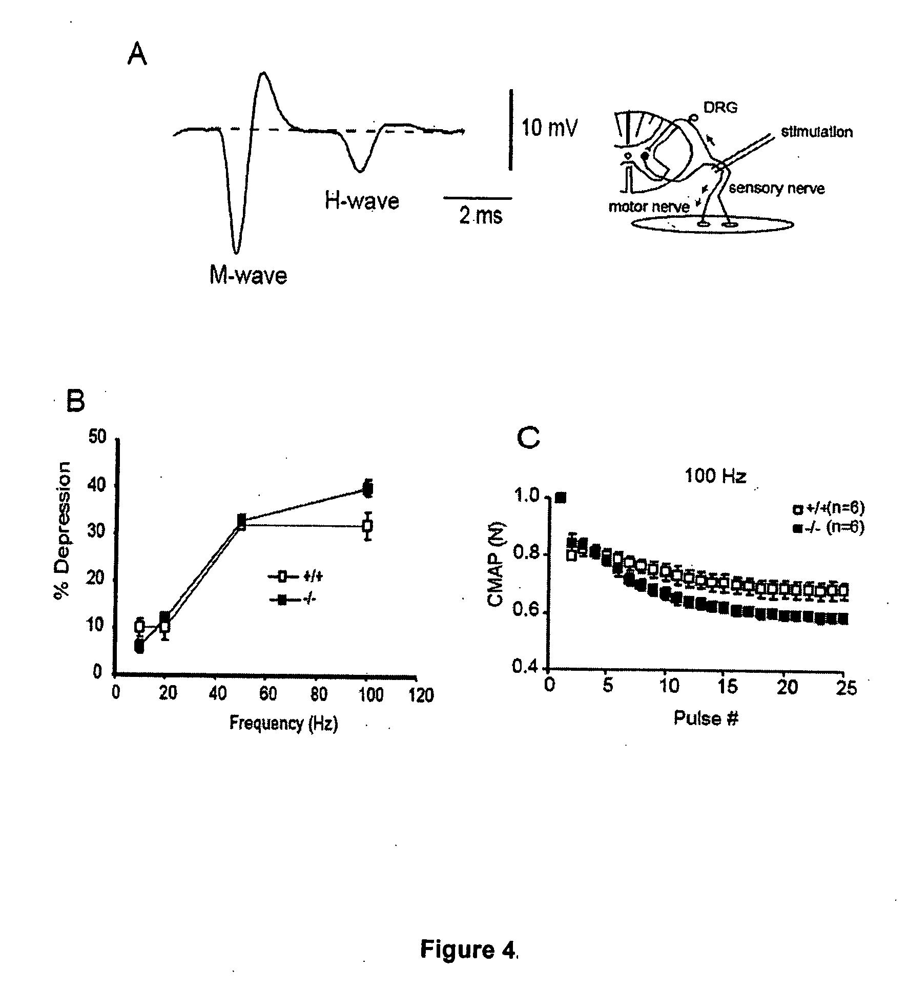 Patent us20070031418 methods for treating lower motor for Lower motor neuron diseases