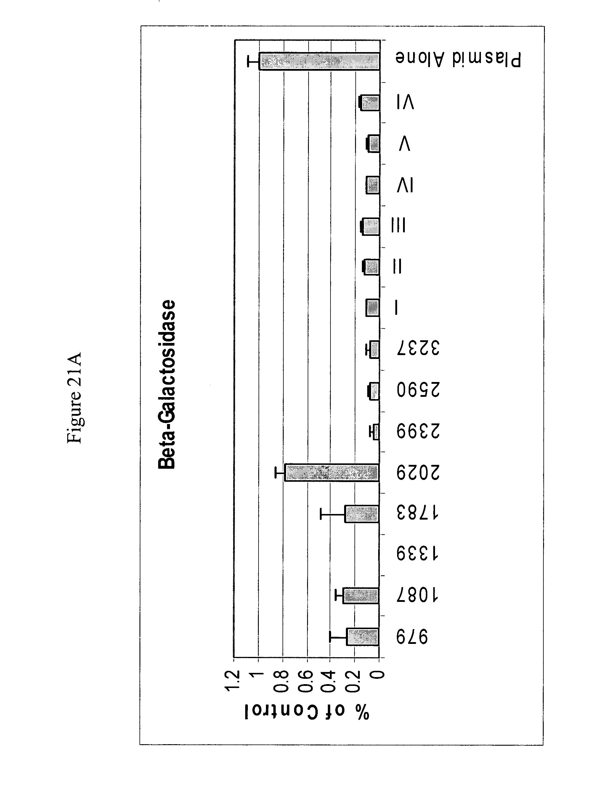 电路 电路图 电子 原理图 2070_2734 竖版 竖屏