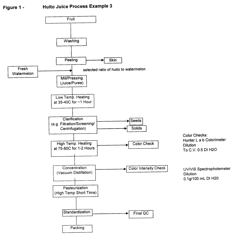 apa format term paper template