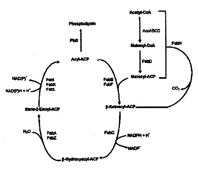 电路 电路图 电子 原理图 1527_1320