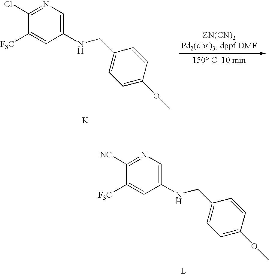 Figure US20100190991A1-20100729-C00131