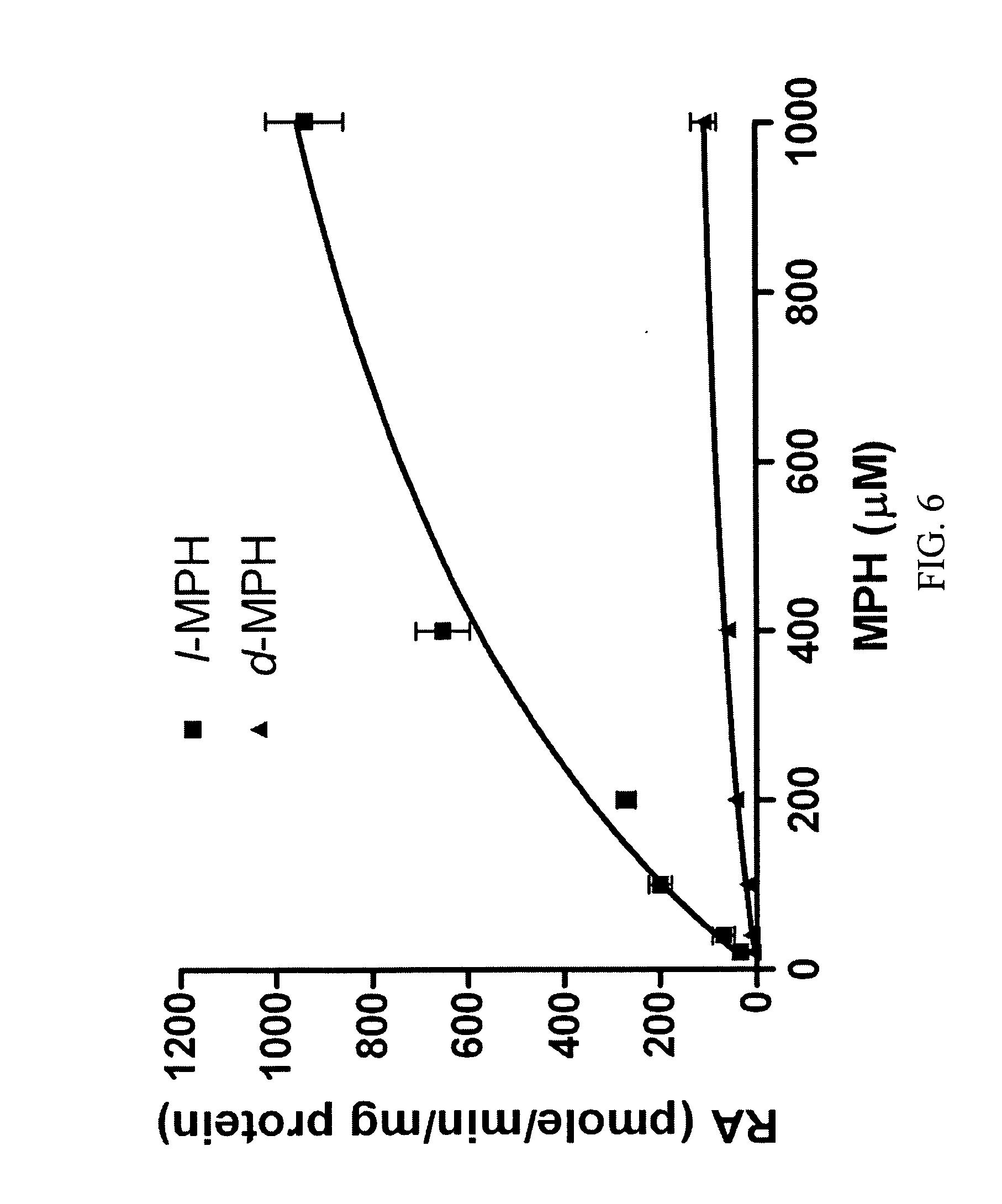 metformin how it works