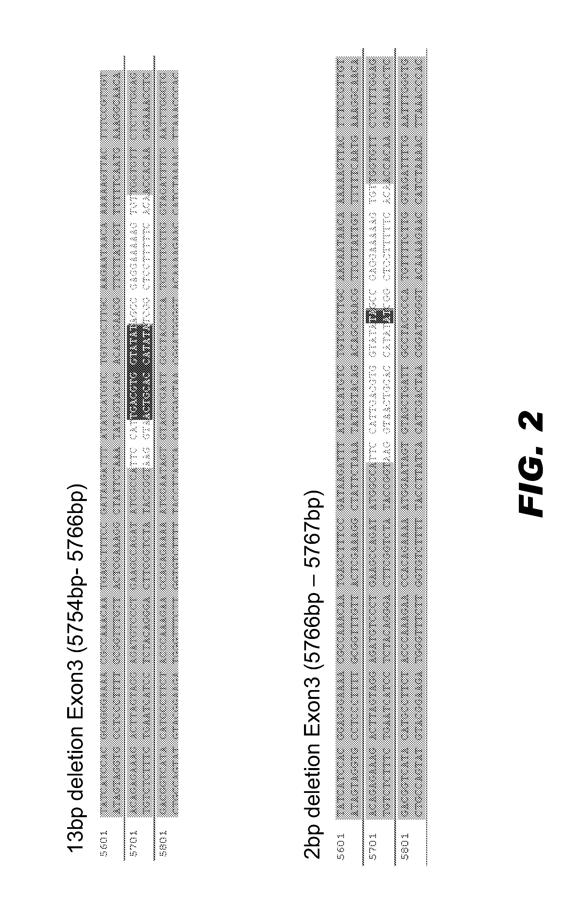 Patent US Genome editing of immunodeficiency genes in