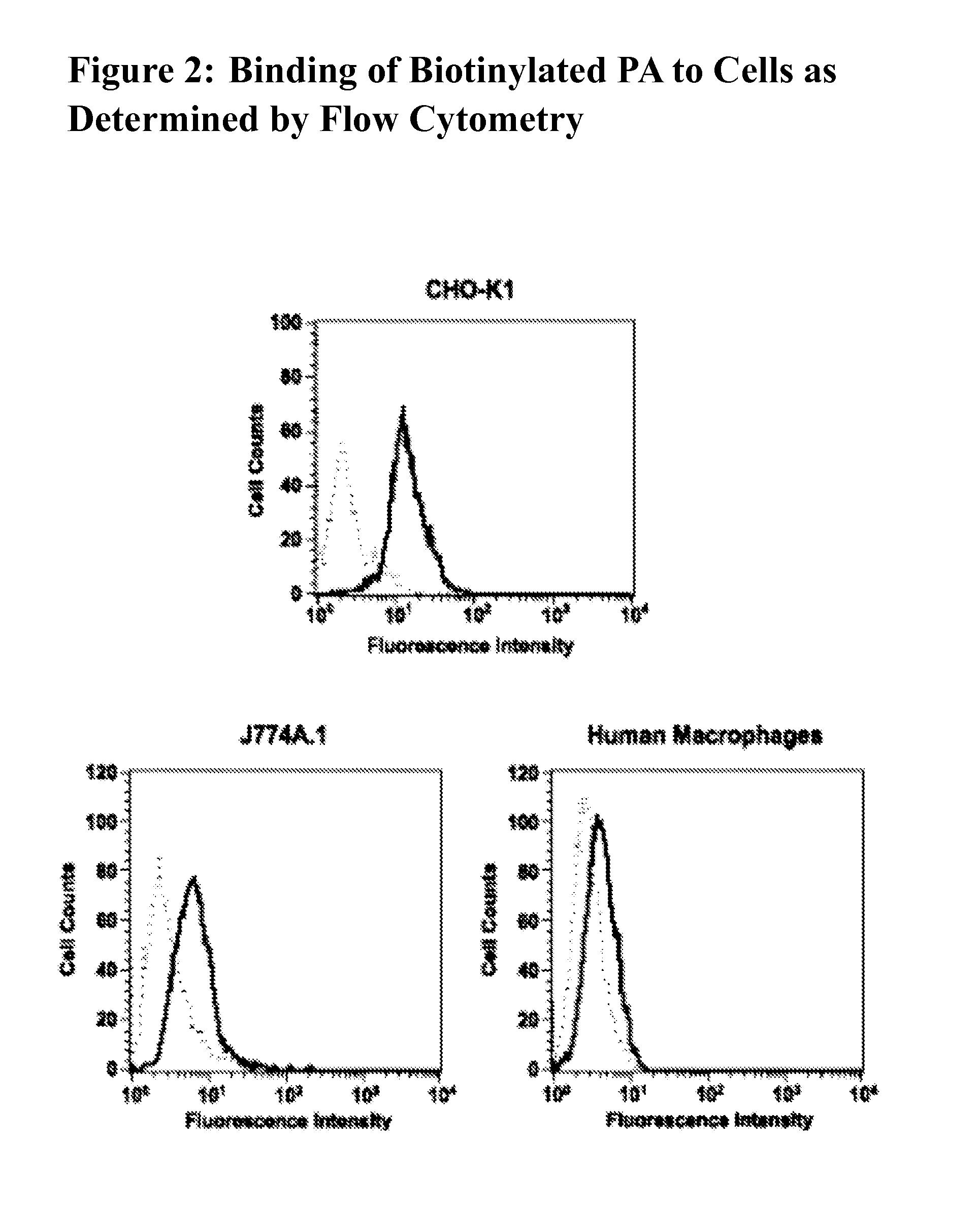 Patent US20110189197 - Antibodies Against Protective Antigen ...
