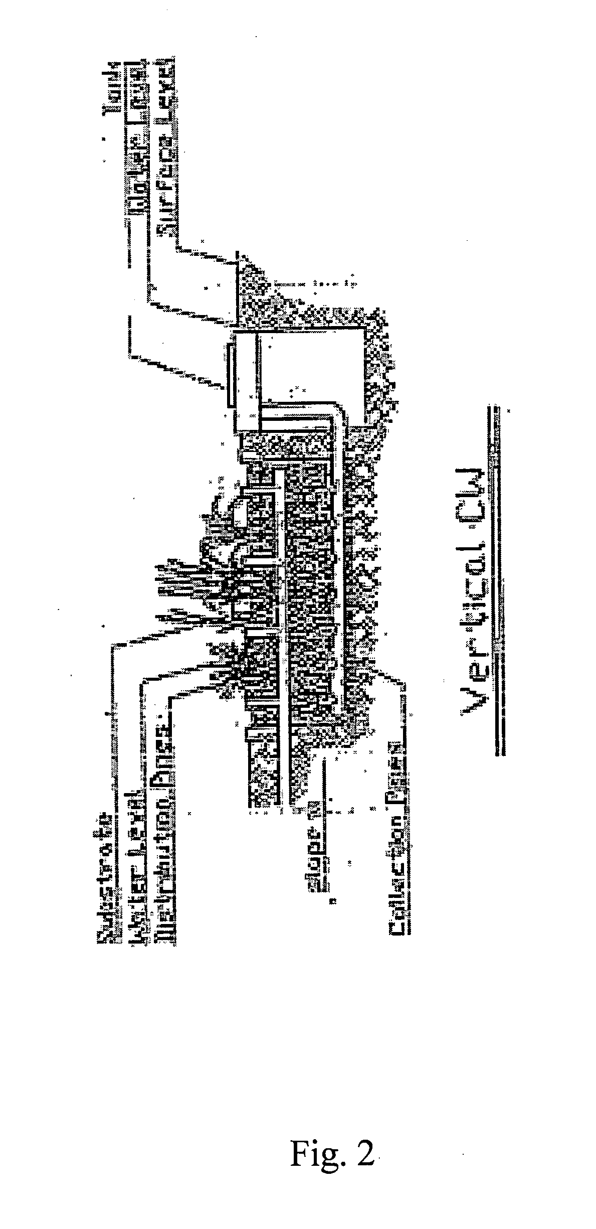Patent US Phytoremediation for desalinated water post