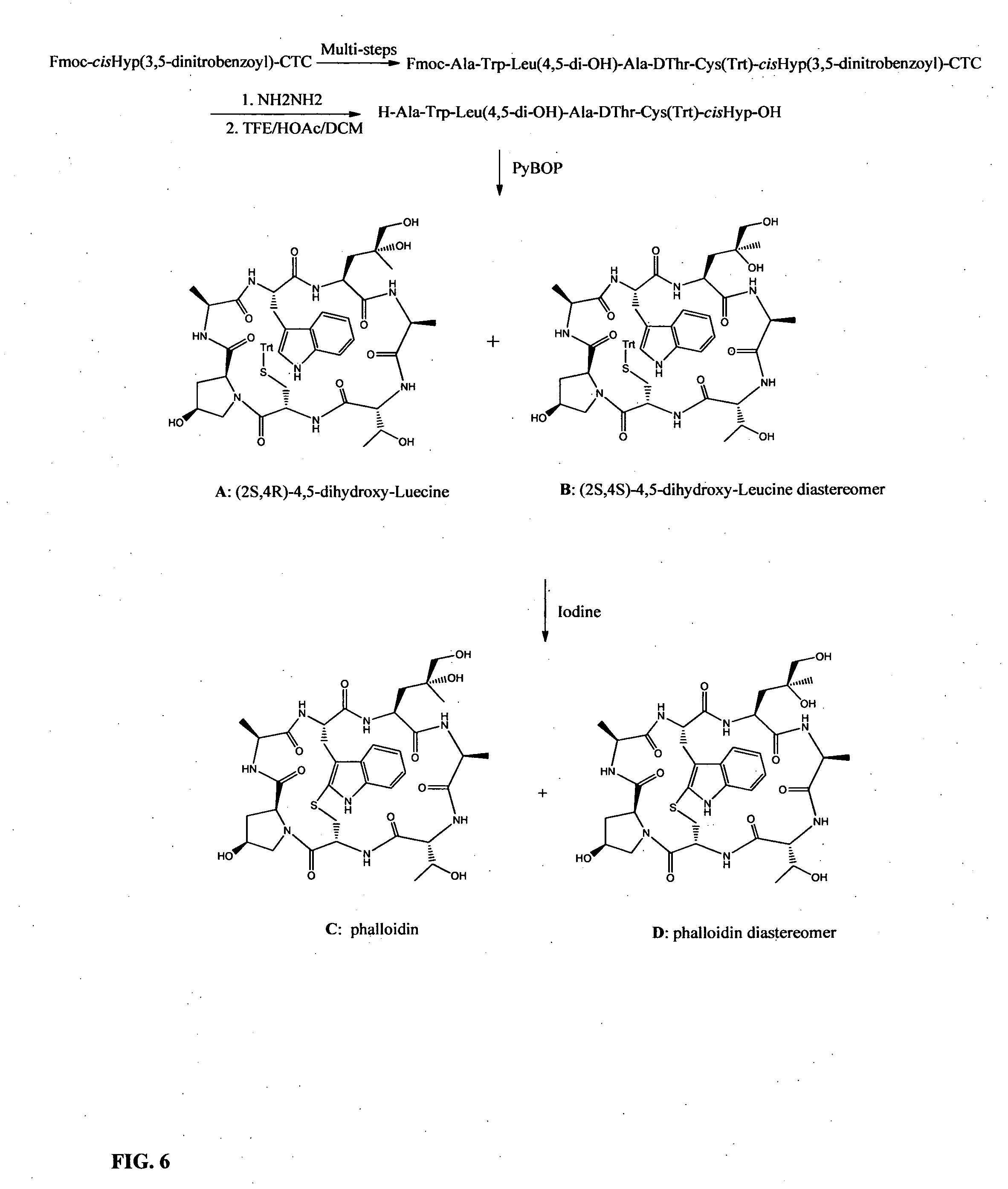 Patent us20120214968 preparation of phalloidin and its patent drawing hexwebz Images