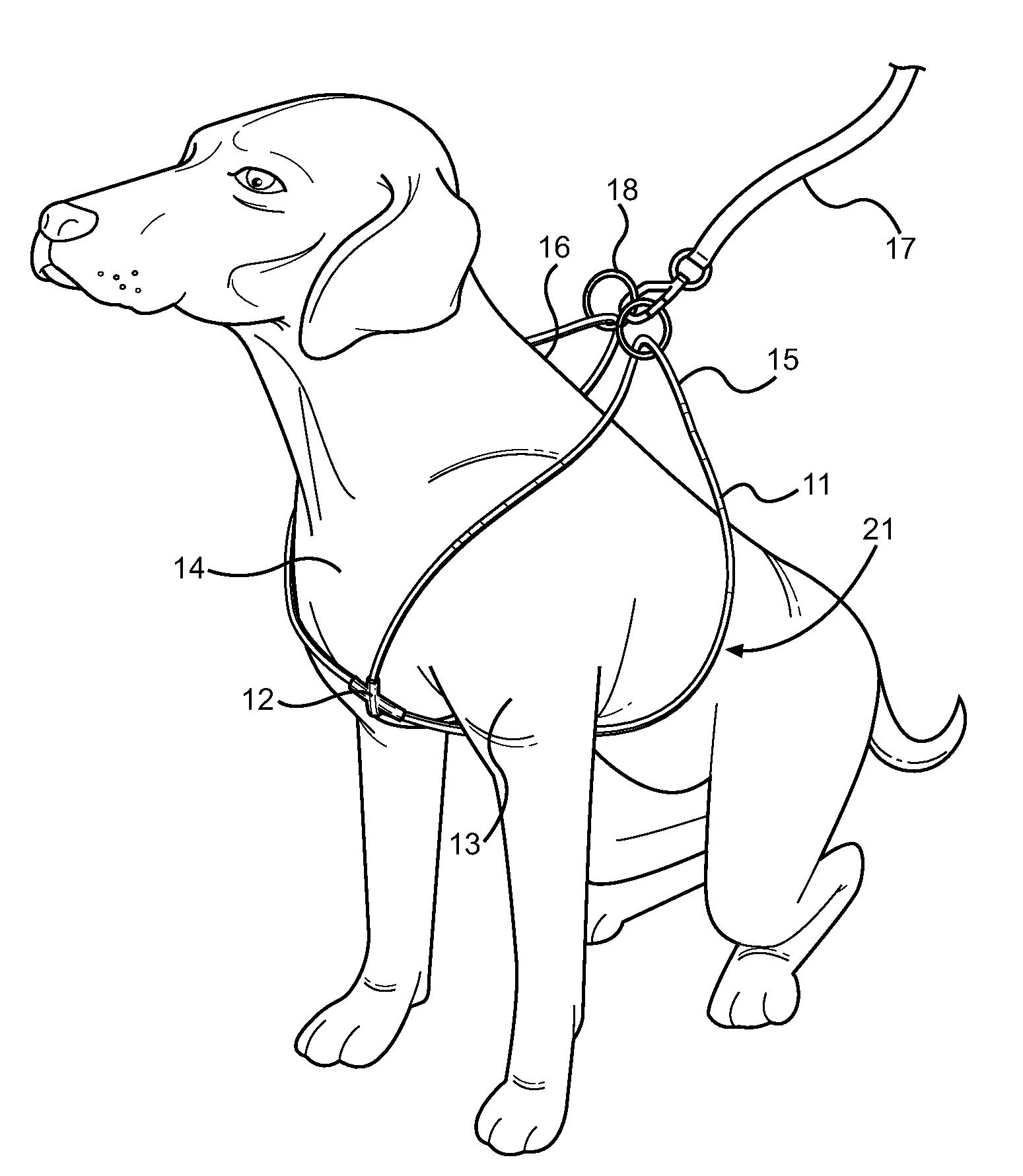 patent us20120234261 - looped dog walking harness