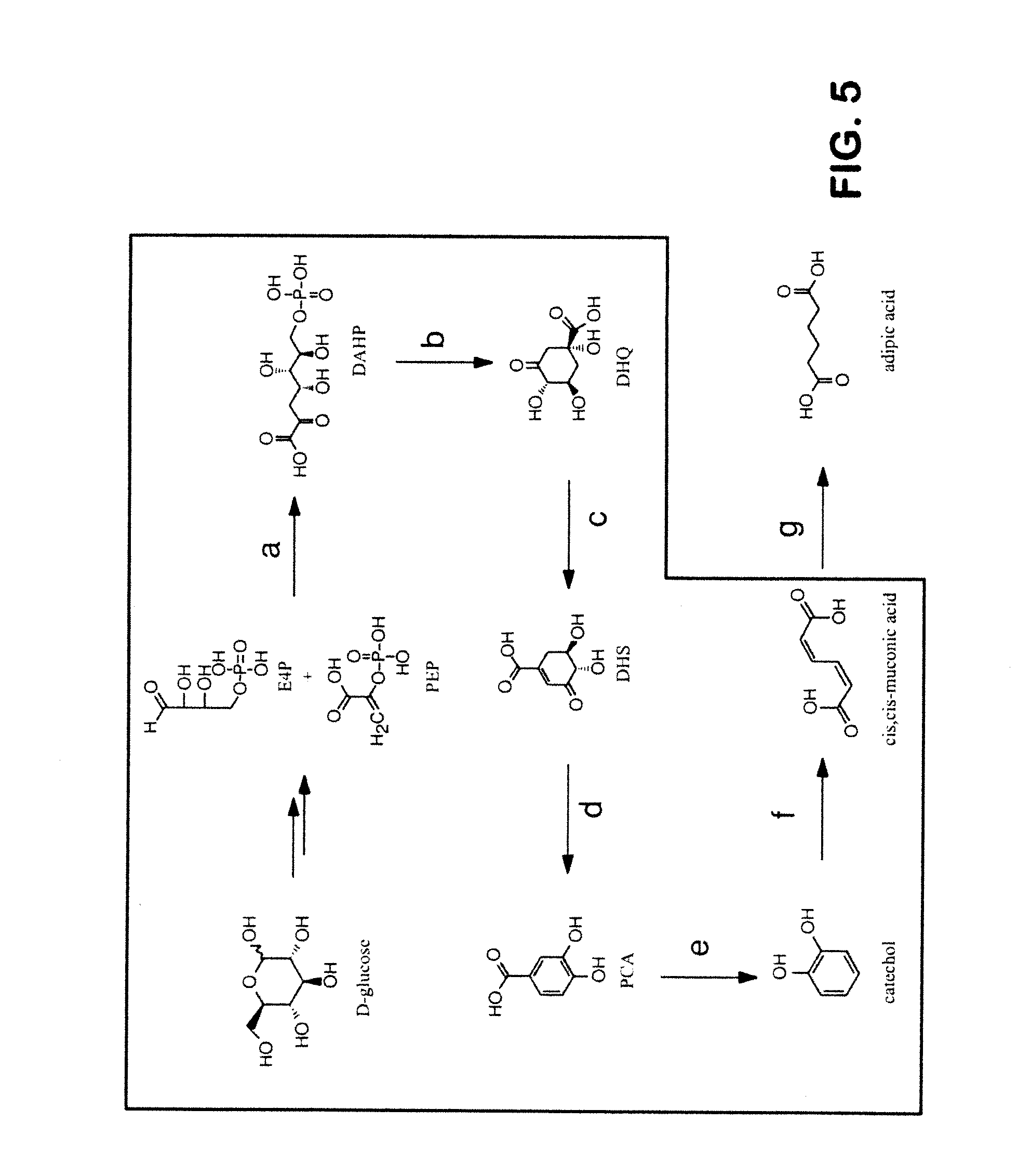 adipic acid Structure, properties, spectra, suppliers and links for: adipic acid, 124-04-9.