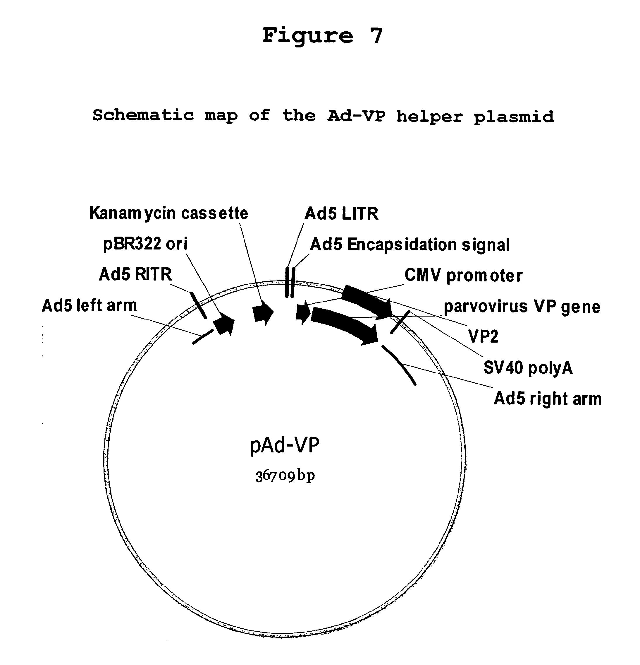 Various Production - VA1